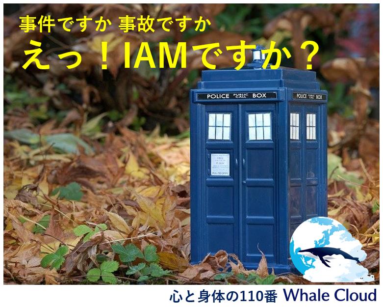 IAM遠隔セッション・ご体験者おたより集【パートⅡ】