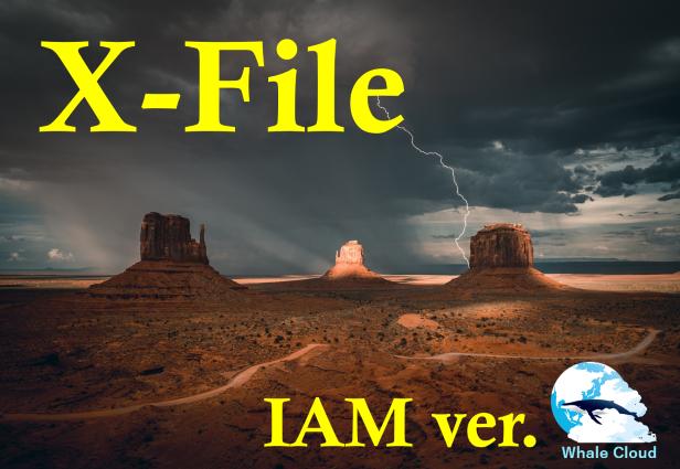 X-ファイル【IAM版】 と栃木県IAM施術会おしらせ